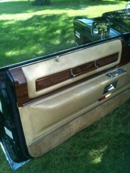 1976 Cadillac Eldorado Convertible Driver Door Panel 2.jpg