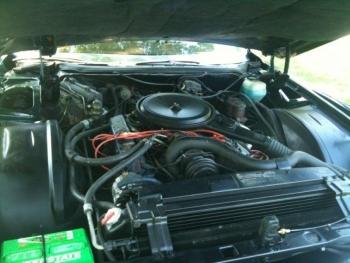 1976 Cadillac Eldorado Convertible Engine.jpg