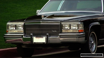 black84coupe12 WM.jpg