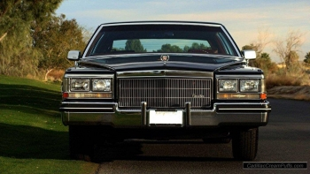 black84coupe13 WM.jpg