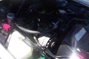 1985 Cadillac Eldorado Biarritz Convertible (39).jpg