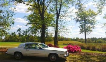 1984 Cadillac Eldorado Biarritz Coupe (20).jpg