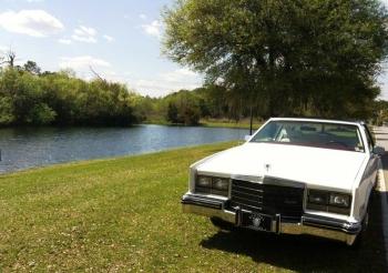 1984 Cadillac Eldorado Biarritz Coupe (18).jpg