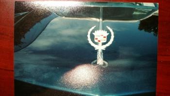 1976 Cadillac Eldorado Convertible(r) - C1301 (10).jpg